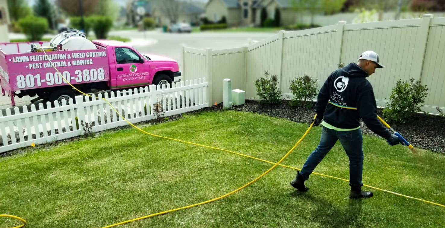 Utah County Lawn fertilization and weed control