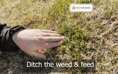 Ditch the Weed & Feed